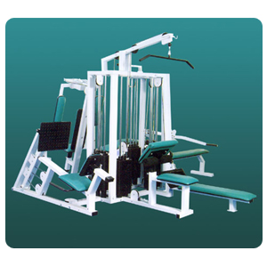 Eight Station Multi Gym Deluxe Model