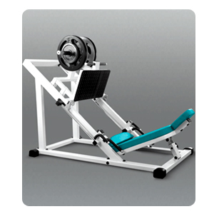 Gym equipment manufacturer in Mumbai , Delhi , Bangalore , Hyderabad , Ahmedabad , Chennai , Kolkata , Pune , Lucknow , Amritsar , Chandigarh , Jalandhar , Hariyana, Gujarat, Rajashtan