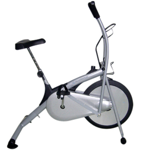 Platinum Air Bike