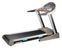Gold 401 Treadmill